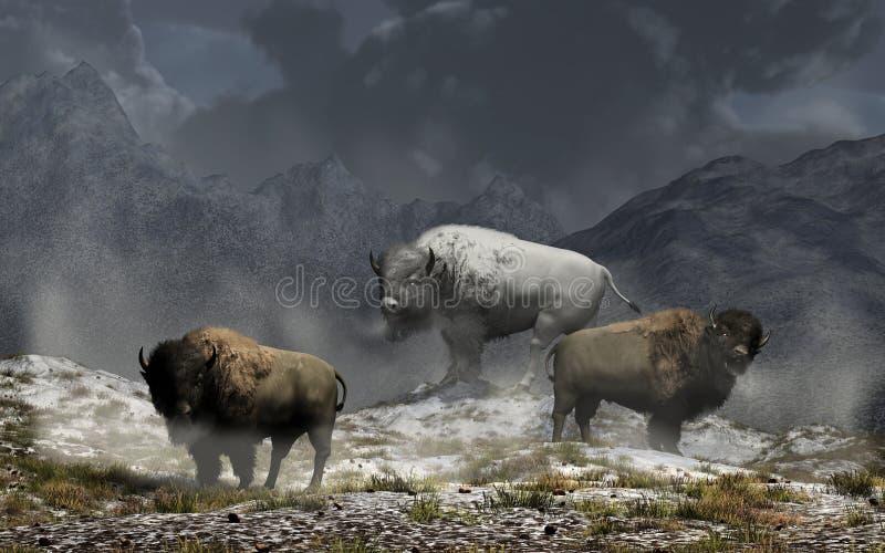 Bison King illustration stock