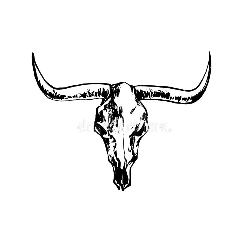 Bison skull hand drawing image. Buffalo cranium vector illustration. Cow head bone black isolated on white background vector illustration