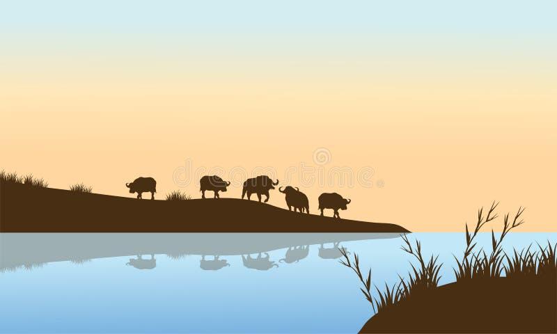 Bison Sunrise no rio ilustração royalty free