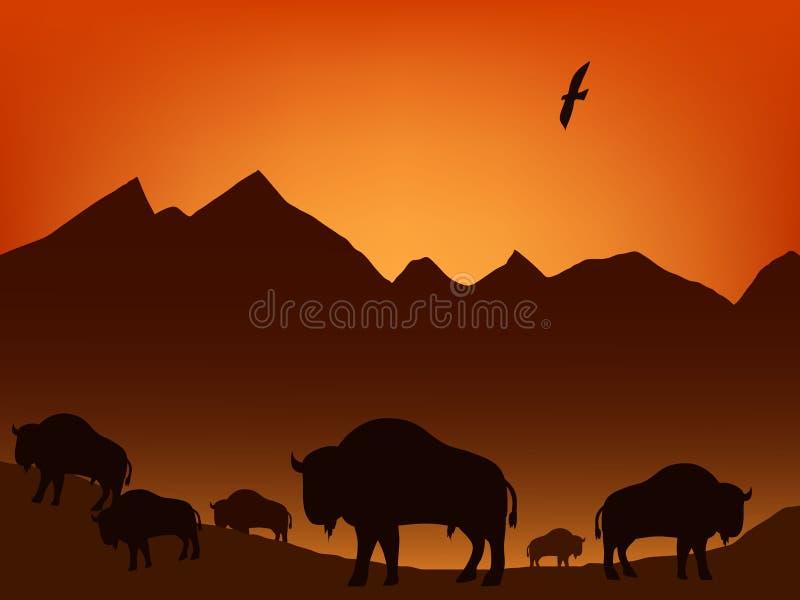 Bison sur la prairie illustration libre de droits