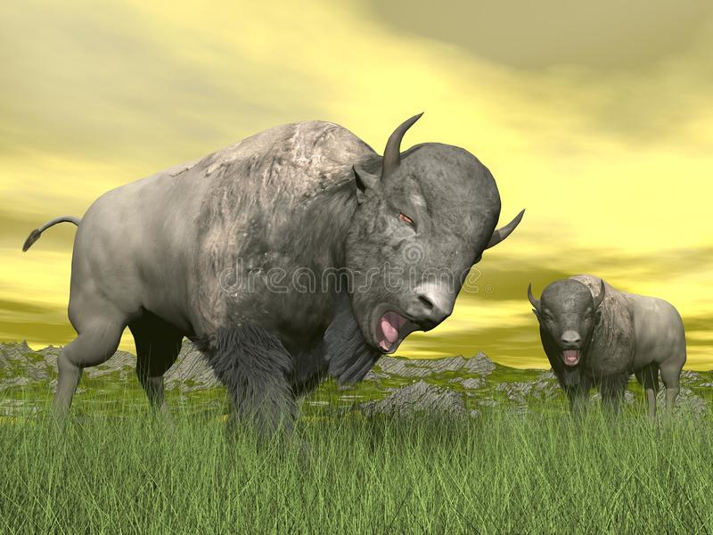 Bisons en nature - 3D rendent illustration libre de droits