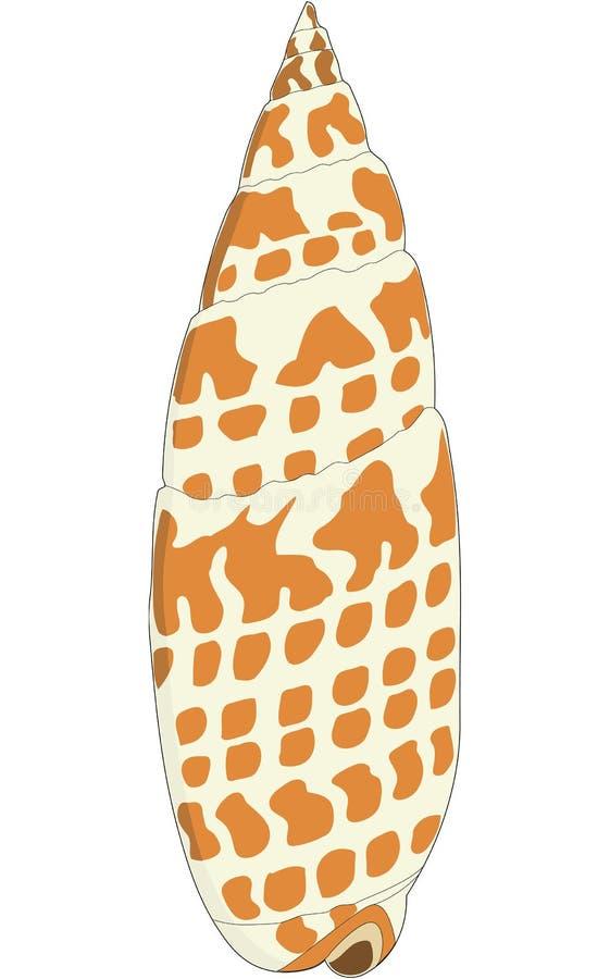 Bisschoppelijke Mijter Shell Illustration vector illustratie