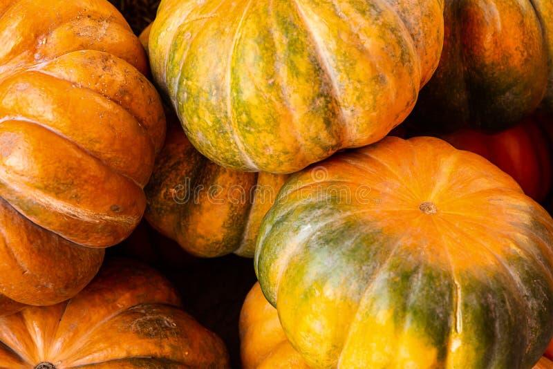 Bisskürbis Mini-Orange grüne Gemüse Herbsternte Hintergrund lizenzfreie stockfotos