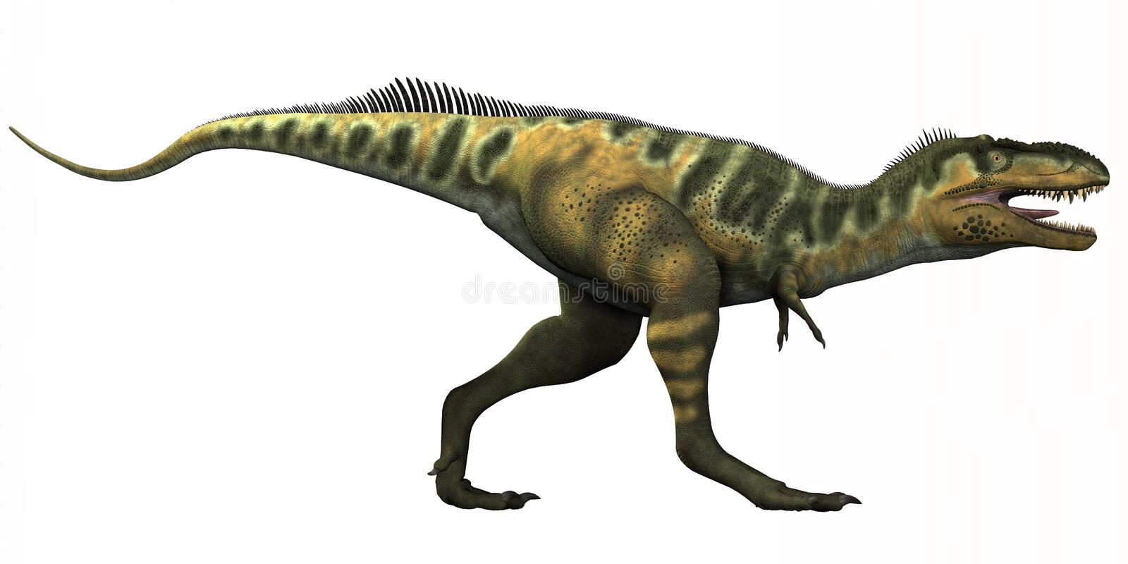 Bistahieversor Dinosaur. Bistahieversor is a genus of tyrannosauroid dinosaur that lived in New Mexico during the Cretaceous Period royalty free illustration