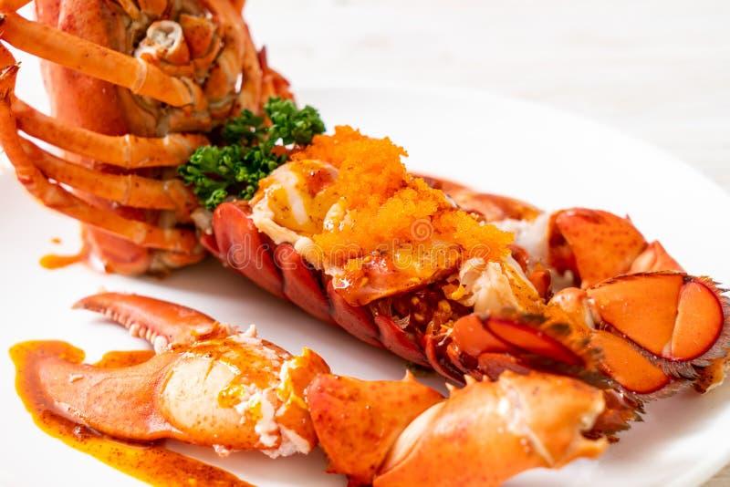 Bistecca della coda di aragosta con salsa fotografia stock libera da diritti