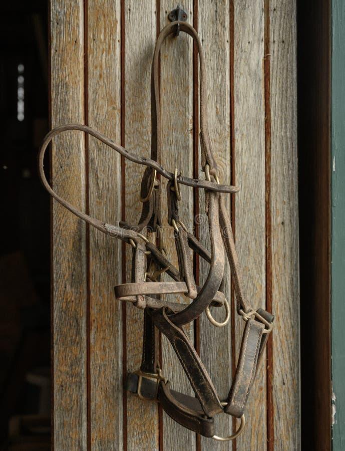 Bit y Bridle Hang en la pared imagenes de archivo