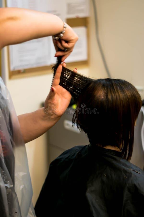 Bitande hår arkivfoto