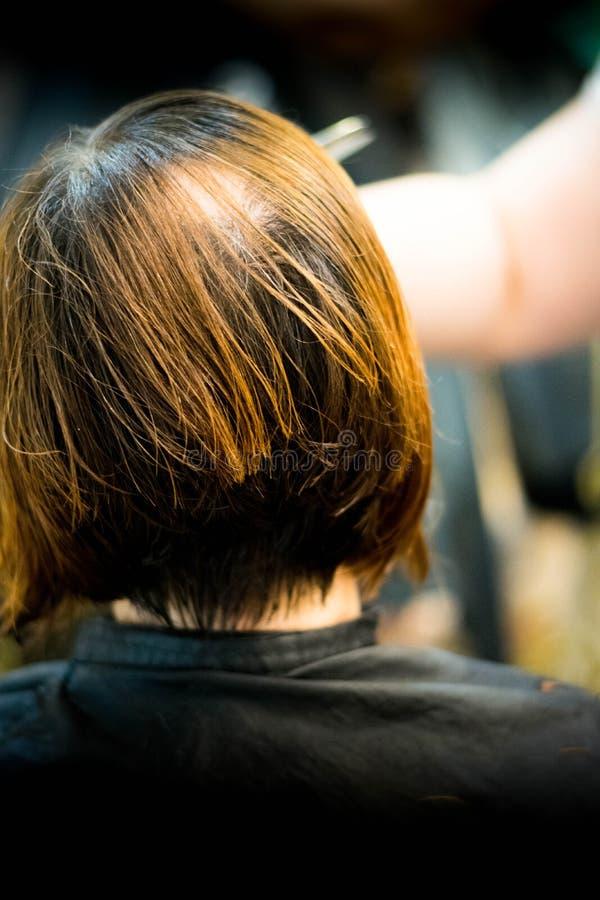 Bitande hår fotografering för bildbyråer