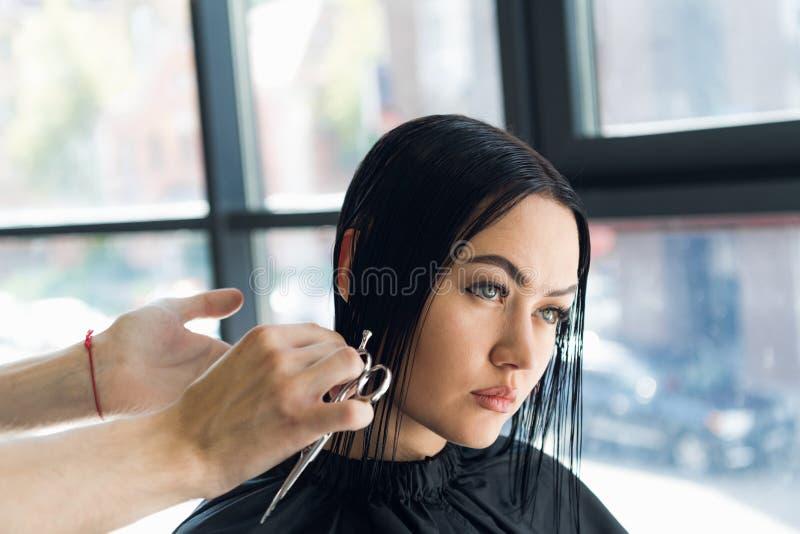 Bitande hår för frisör av en härlig allvarlig brunettkvinna royaltyfri foto