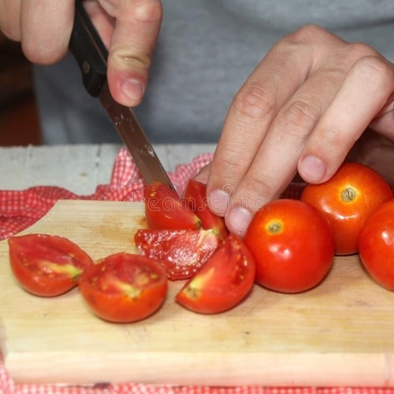 Bitande tomater royaltyfria foton