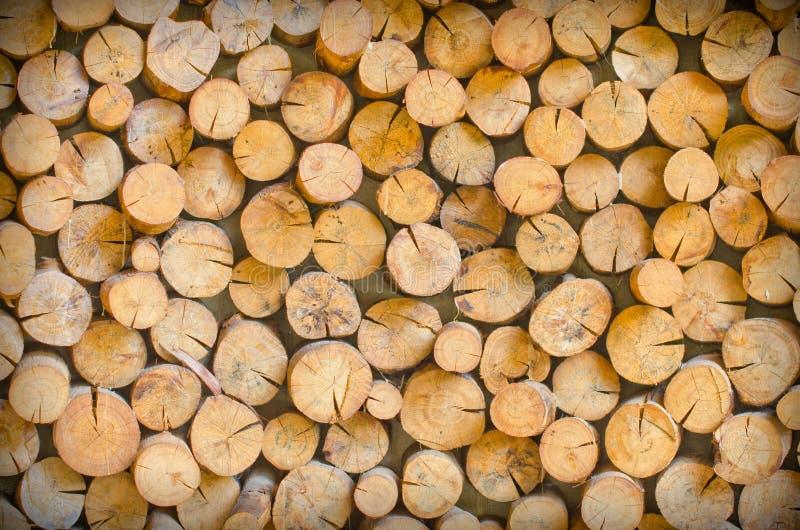 Bitande trä är ordnar att vara den naturliga väggen royaltyfria bilder