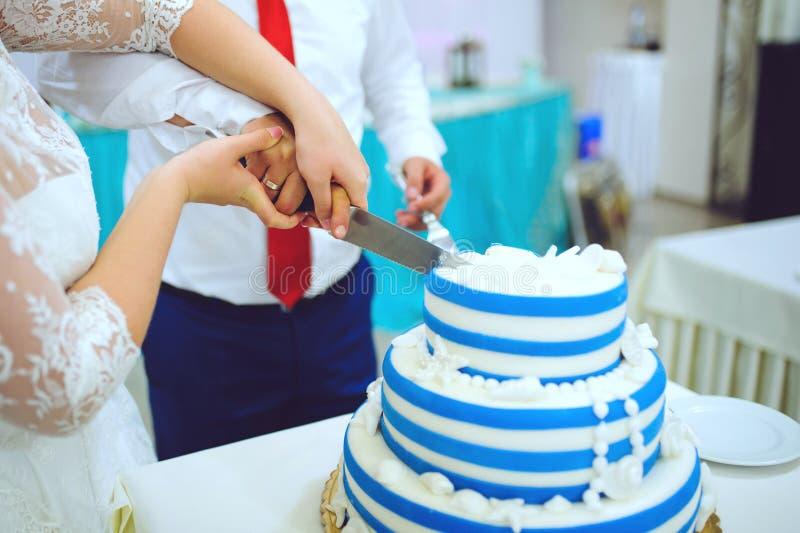 Bitande vit- och blåttkaka royaltyfri fotografi