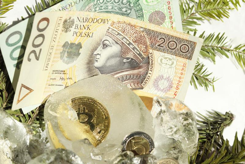 Bitcoin在冰片断的一半结冰的金币在白色背景的与圣诞树分支和波兰金钱 100和 免版税库存照片