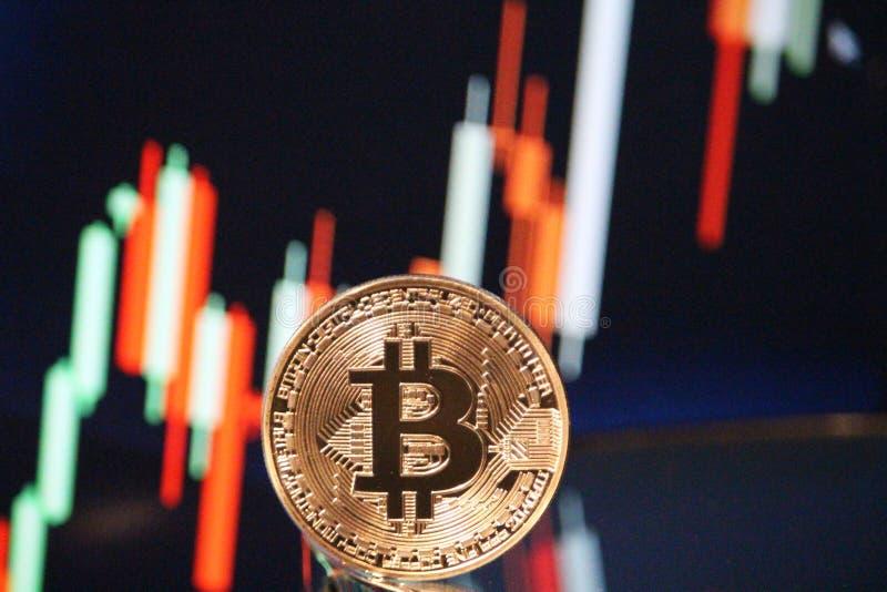 Bitcoin看涨图集会 库存照片