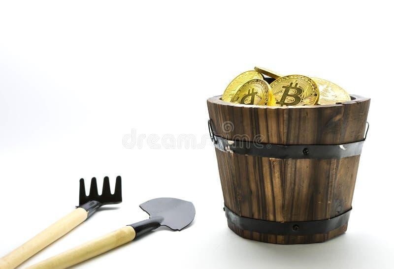 Bitcoin采矿,金黄bitcoins在手中 新的真正货币的数字式标志在孤立的 免版税库存照片