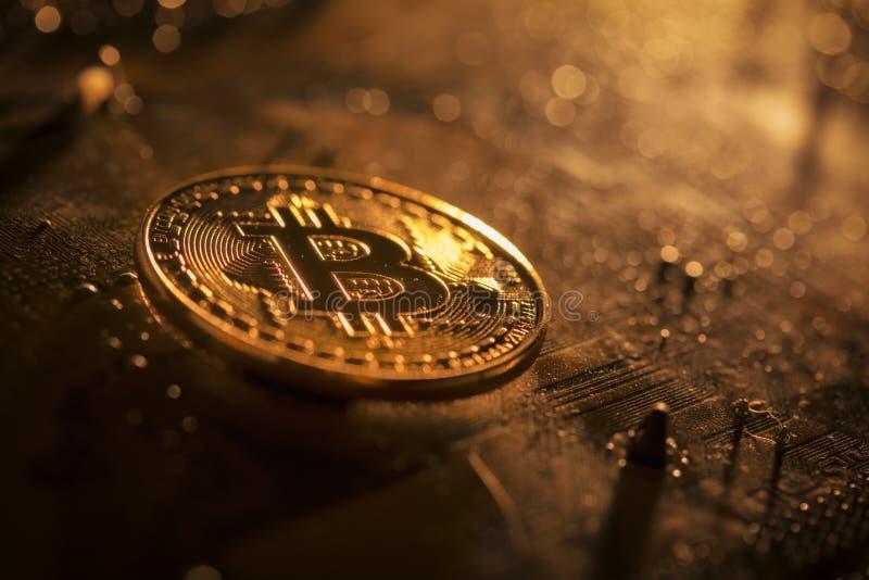 Bitcoin żeton na płycie głównej obrazy stock