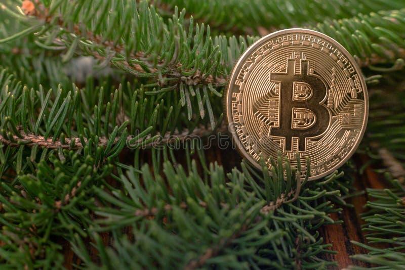 Bitcoin στα υπόβαθρα Χριστουγέννων στοκ εικόνες