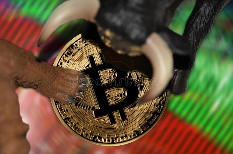Bitcoin borsukowaty i zwyżkowy rynek papierów wartościowych wykazuje tendencję konceptualną ilustrację zdjęcia royalty free