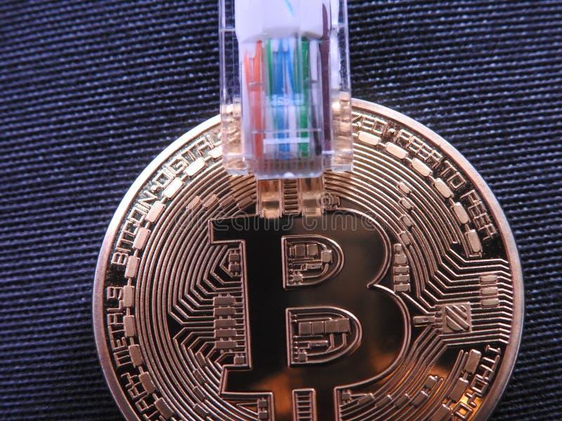 Bitcoin con en el enchufe superior rj45 fotografía de archivo libre de regalías