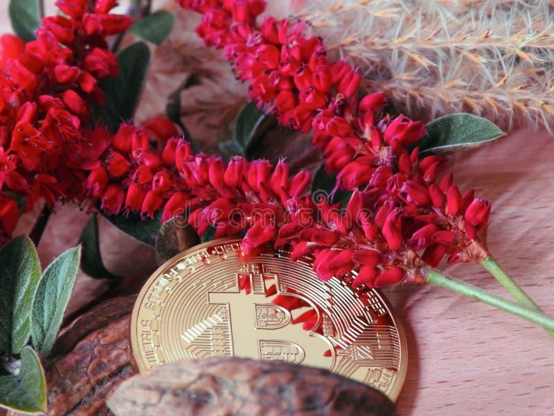 Bitcoin con las flores rojas foto de archivo libre de regalías