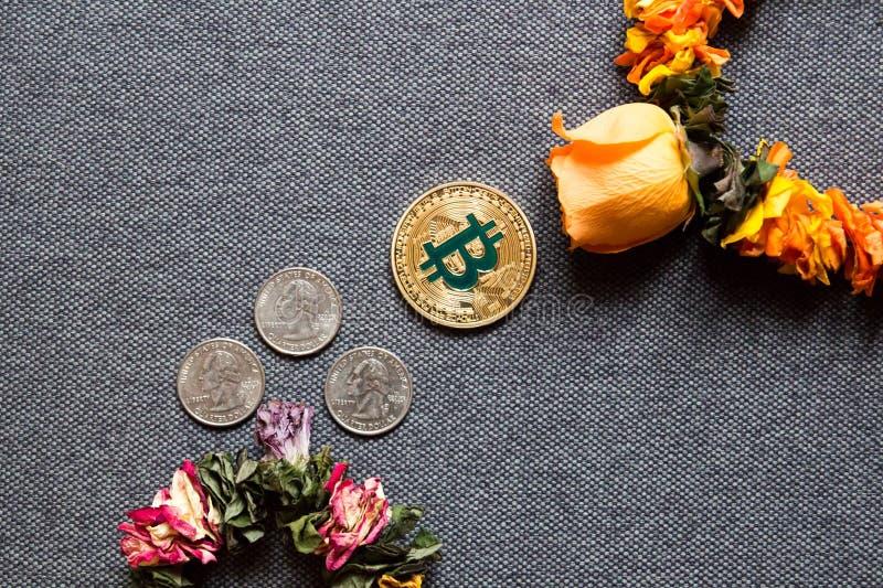 Bitcoin crece, la caída de los dólares fotografía de archivo