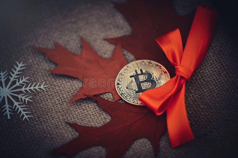 Bitcoin, crypto devise d'or Bitcoiny d'or dans la perspective des feuilles d'automne et des flocons de neige, automne froid Dos c image libre de droits