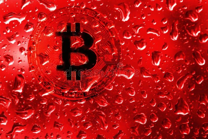 Bitcoin de la moneda detrás del vidrio con descensos rojos fotografía de archivo