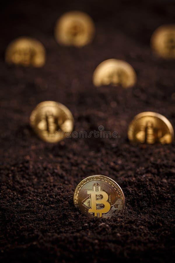 Bitcoin dorato nascosto immagini stock