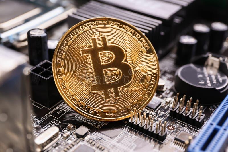 Bitcoin dorato sul circuito del PC fotografia stock