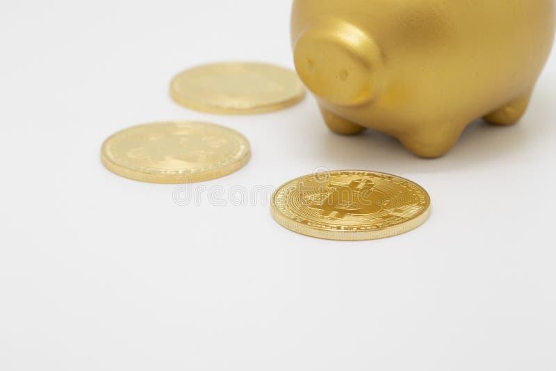 Bitcoin en spaarvarken stock afbeelding