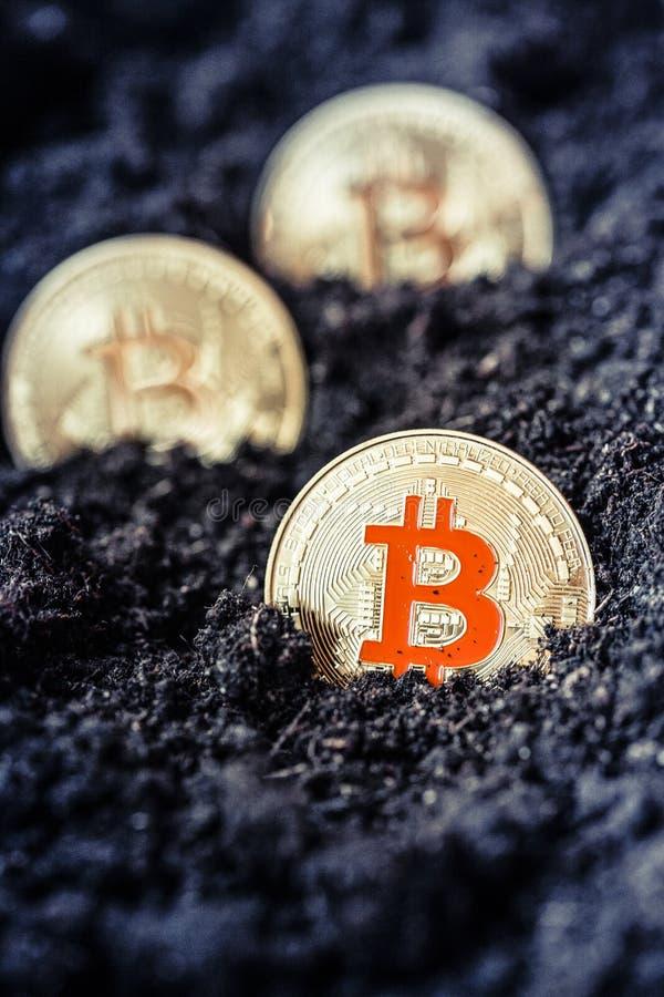 bitcoin en terre - concept de extraction de cryptocurrency images stock