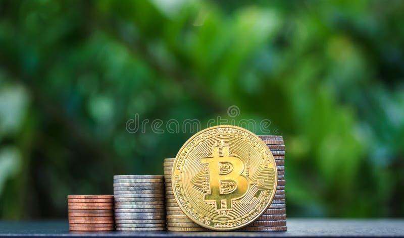 Bitcoin för guld- mynt mot bakgrunden av en grön bakgrund fotografering för bildbyråer