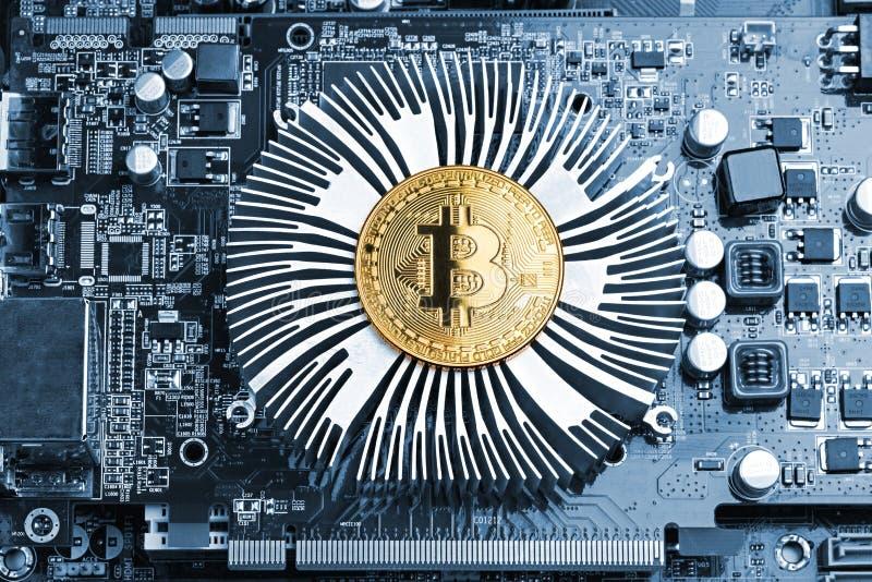 Bitcoin guld- mynt på moderkortchip för grafiskt kort royaltyfri foto