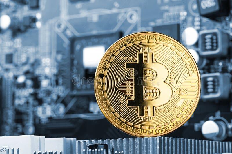 Bitcoin guld- mynt på moderkortchip för grafiskt kort royaltyfria foton