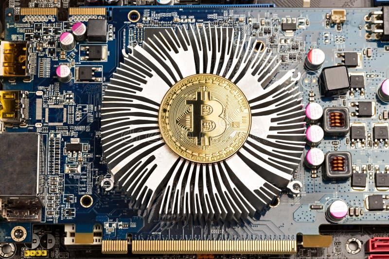 Bitcoin guld- mynt på moderkortchip för grafiskt kort royaltyfri fotografi
