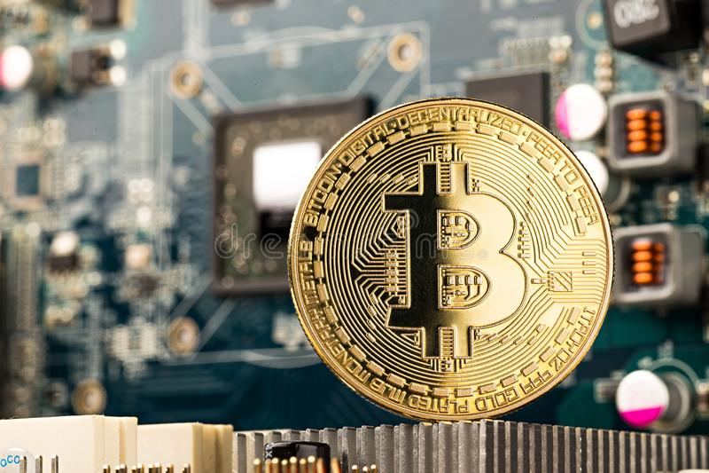 Bitcoin guld- mynt på moderkortchip för grafiskt kort royaltyfria bilder