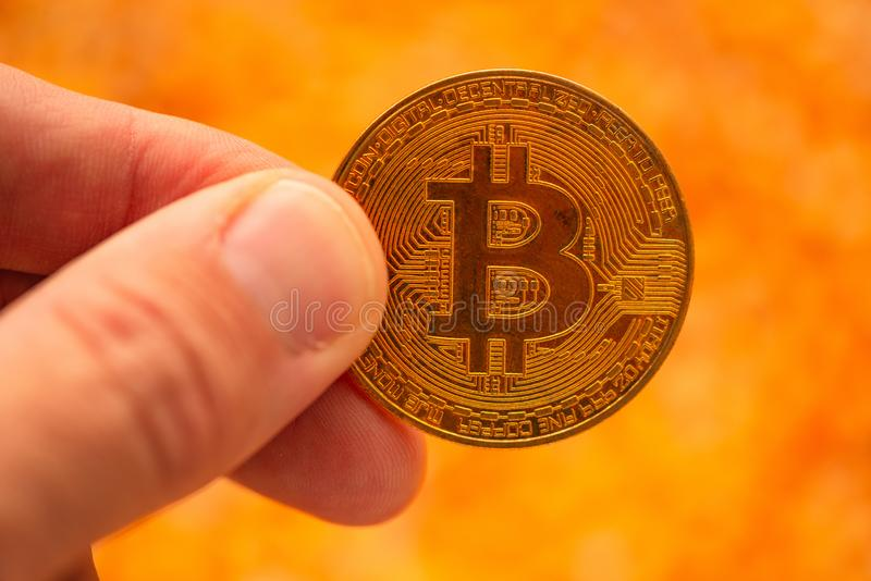 Bitcoin in hand over corn kernels heap royalty free stock photo