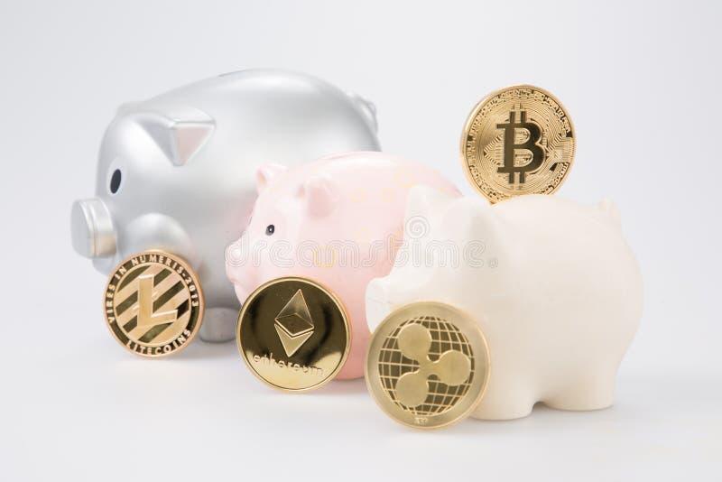 Bitcoin moneta w prosiątko banka Cyfrowego waluty pieniądze handlu z cryptocurrency monetą z zysku finanse pojęciem zdjęcia royalty free