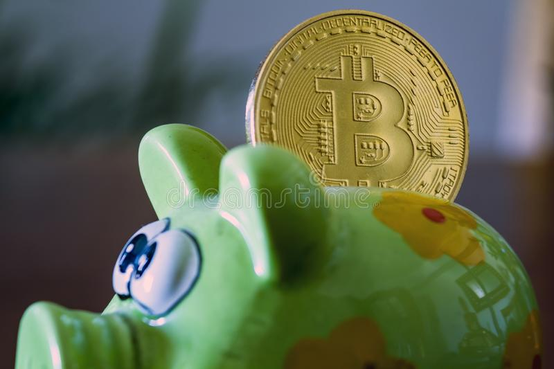 Bitcoin in a piggy bank. Cryptocurrency and saving concept.  royalty free stock photo