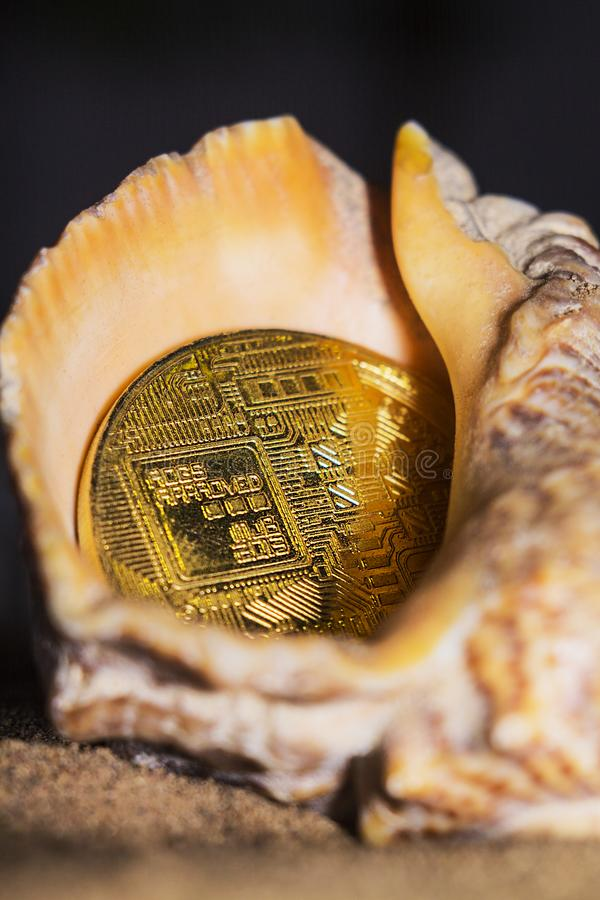 Bitcoin skal 3 royaltyfri fotografi
