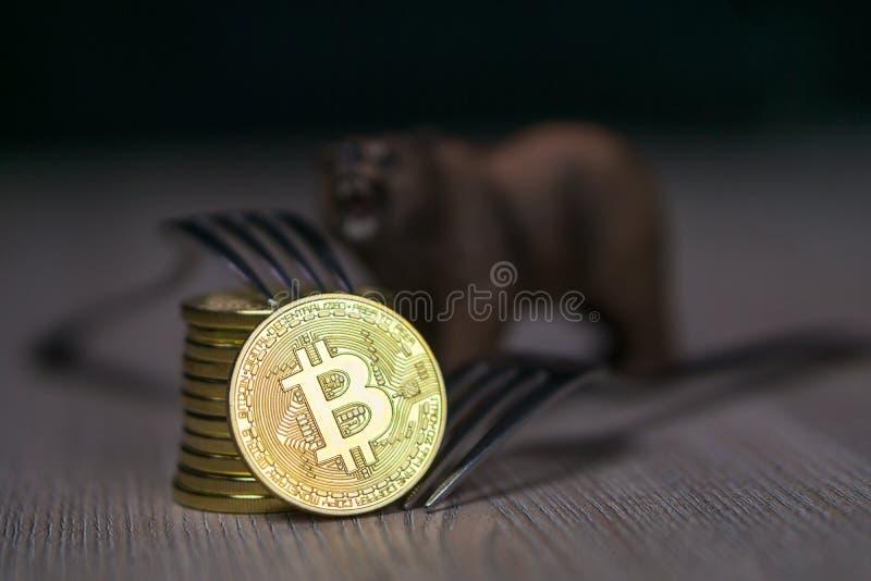 Bitcoin som får ny hård gaffeländring, det fysiska guld- Crytocurrency myntet med gaffeln och björnen bredvid den arkivbild