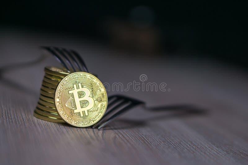 Bitcoin som får ny hård gaffeländring, fysiskt guld- Crytocurrency mynt med gaffeln, Blockchain begrepp fotografering för bildbyråer