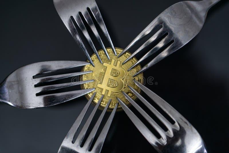 Bitcoin som får ny hård gaffeländring, fysiskt guld- Crytocurrency mynt under gafflar arkivfoto