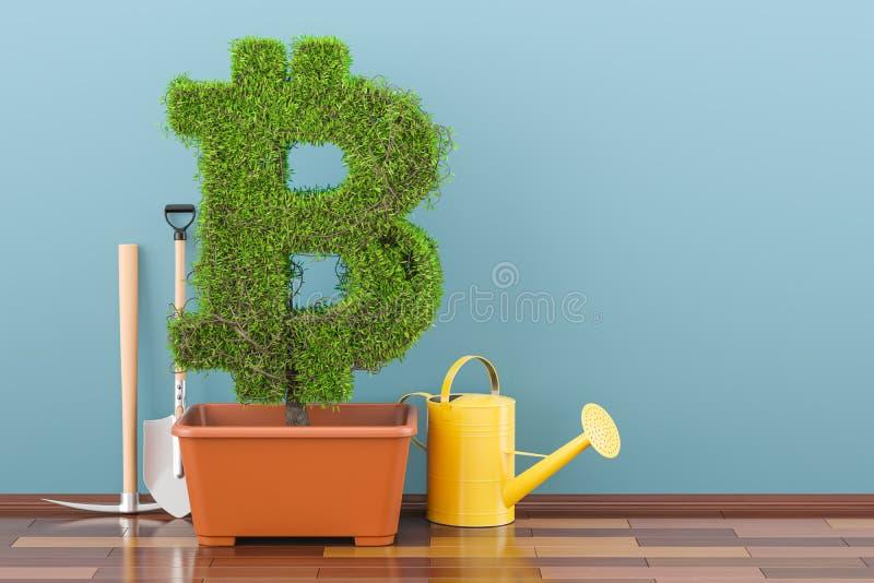 Bitcoin-Symbol im Blumentopf mit Gießkanne Wiedergabe 3d lizenzfreie abbildung