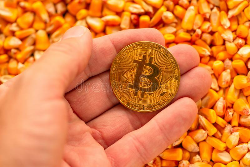 Bitcoin ter beschikking over de hoop van graanpitten stock afbeeldingen