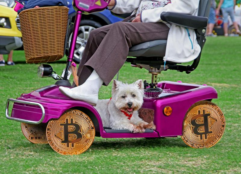 Bitcoin wheels on disability scooter. Photo of a bitcoin wheels on disability scooter with dog taking a ride ideal for success smart concept stock photography
