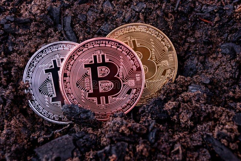 Bitcoinlögn för tre mynt på jordningen arkivfoton