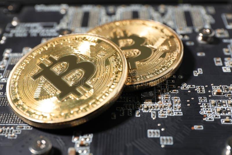 Bitcoins de oro en la placa de circuito del ordenador, primer imagenes de archivo