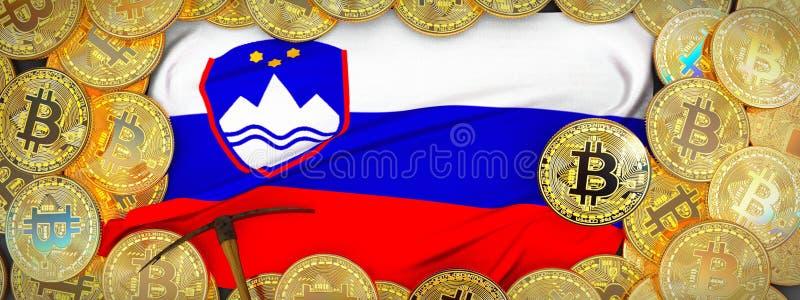 Bitcoins guld runt om den Slovenien flaggan och spetshacka på det vänstert 3D mig royaltyfria foton