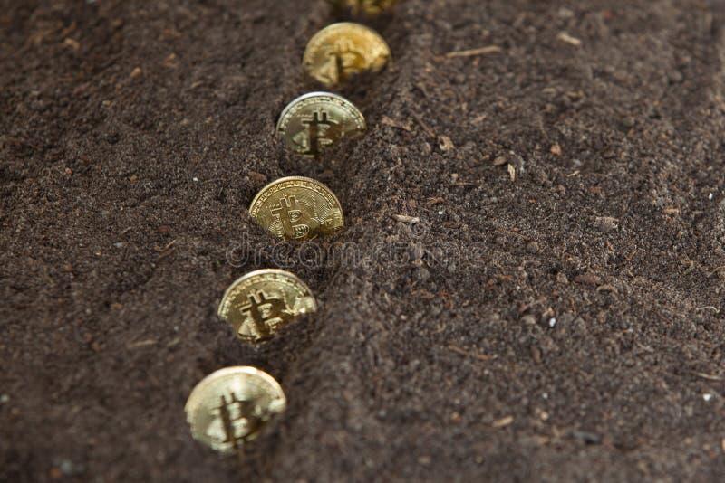 Bitcoins kärnade ur i rad i trädgårdjord arkivbilder